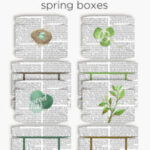 Boxes for Spring gifts, treats and favors