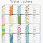 Stay hydrated this summer with these watertrackers for your planner